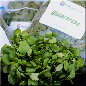 Produce Alive Watercress Hydroponic