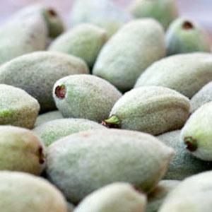 Almond - Green