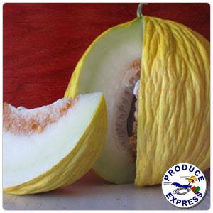 Melon - Casaba