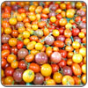 Tomato - Cherry Mixed Medley