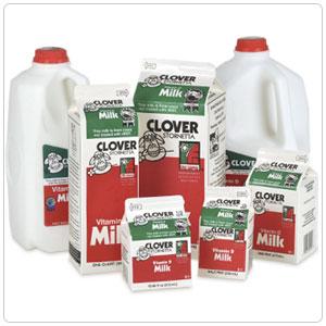 Milk, Whole