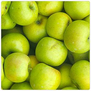 Apple - Pippin