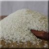 Organic Calrose Rice
